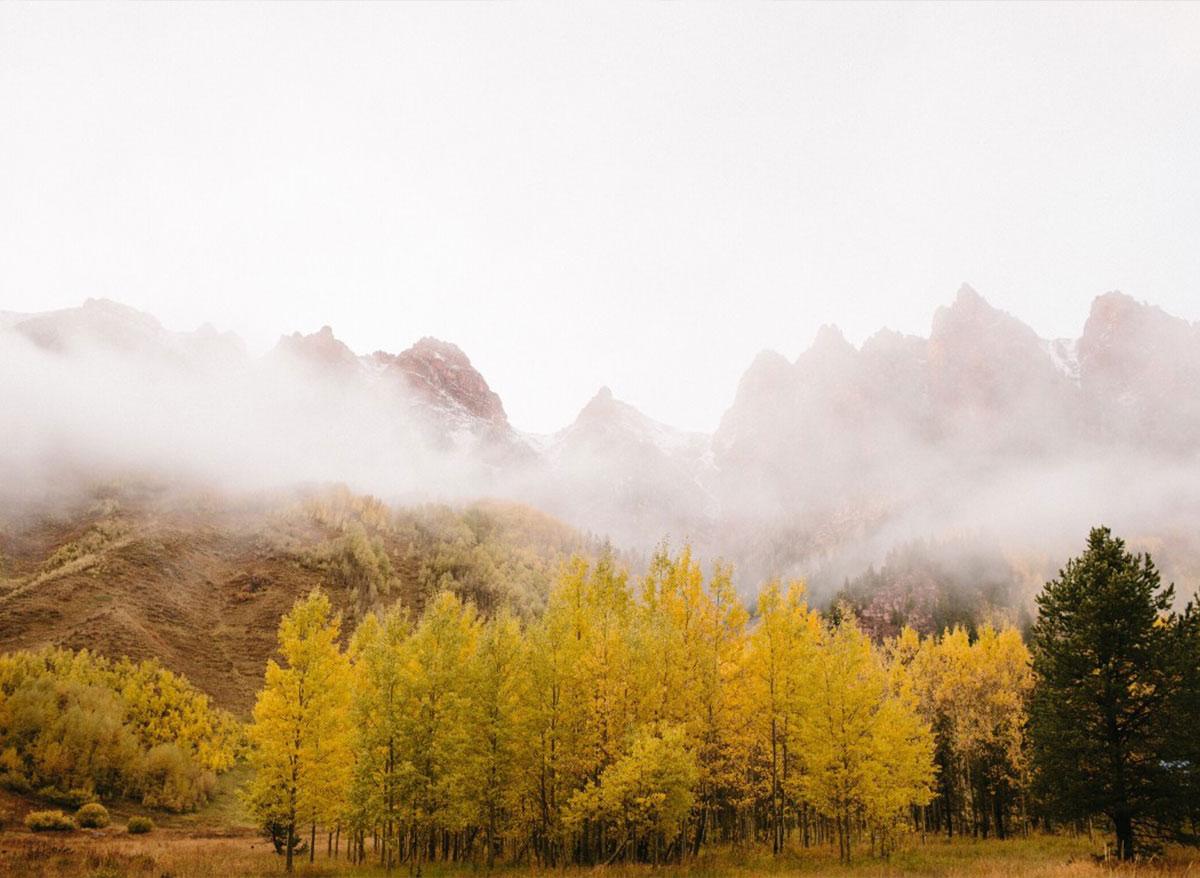 Fall-Chinese-Medicine